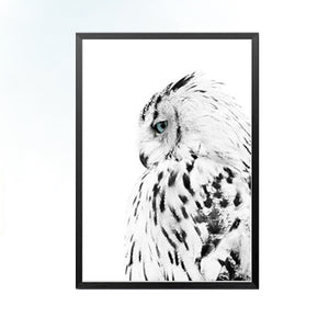 Black And White Owl Wall Art