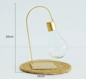 Light Bulb Shape Glass Container Vase