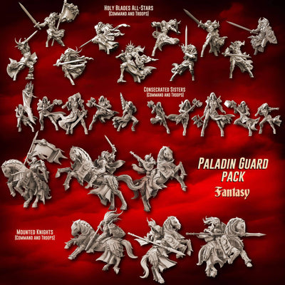 Paladin Guard Pack (SotO – F) - Raging Heroes