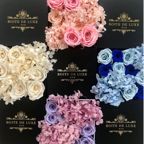 Forever Hydrangea x Rose Mix