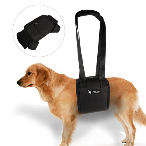 Image of 4 Sizes Dog Lift Assist Support Harness For Elderly, Sick, or Injured Dogs