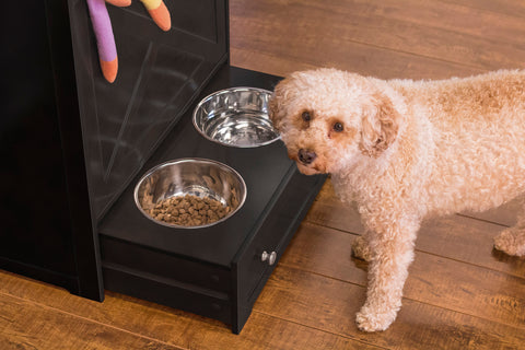 Image of Pet Feeder Station with Built-in Cubbard Storage and Stainless Steel Bowls for Dogs and Cats
