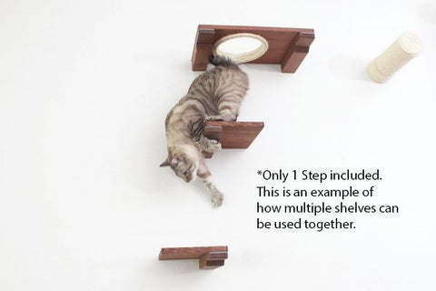 Cat Mod Step By Catastrophi Creations