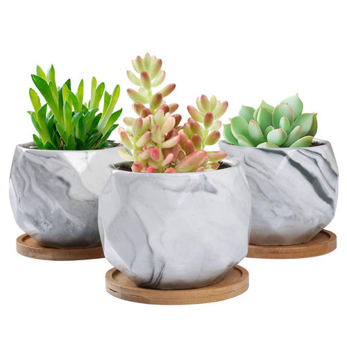 3.2 inch Marble Ceramic Succulent Planter (Amazon)