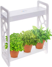 Load image into Gallery viewer, LED Indoor Herb Garden (Amazon)