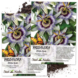 Seed Needs, Blue Passion Flower (Passiflora caerulea) (Amazon)