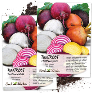 Seed Needs, Rainbow Beet Mixture (Beta vulgaris) (Amazon)
