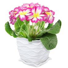 Load image into Gallery viewer, White Ceramic Wave Textured Planter (Amazon)