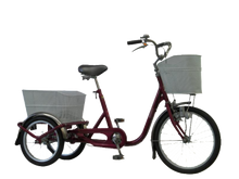 Load image into Gallery viewer, V-Tec Tricycle Standard