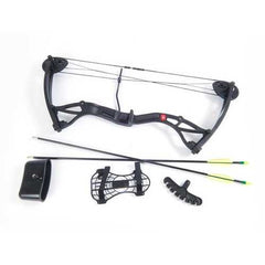 Crosman Wildhorn Compound Bow