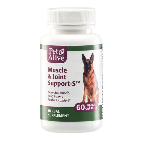 Muscle & Joint Support-