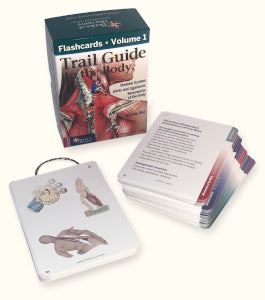 Trail Guide to the Body Flashcards - Vol 1, 6th Edition