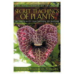 Secret Teachings of Plants