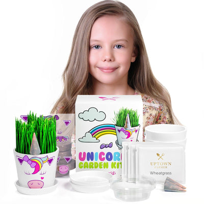 Unicorn Fairy Garden Kit with Unicorn Stickers + Unicorn Horn