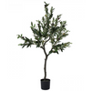 olive tree - large - LD5172-2