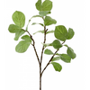 Magnolia leaf branch L149GR - Green