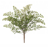 ALB maiden hair fern 42cm/3067712