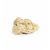 Honeycomb Body Sea Sponge - Large