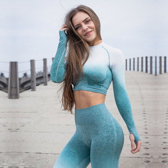 Ombre Seamless Crop Top