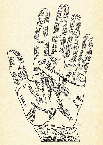 PALMISTRY PRINT: Fortune Teller Art Illustration