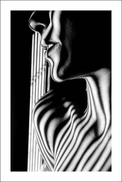 SHADED NUDE PRINT: Weiblicher Körper Photo Art