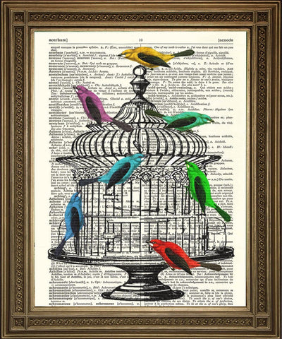BIRDCAGE & BIRDS: Vintage Dictionary Book Page Art - Print Arcade USA
