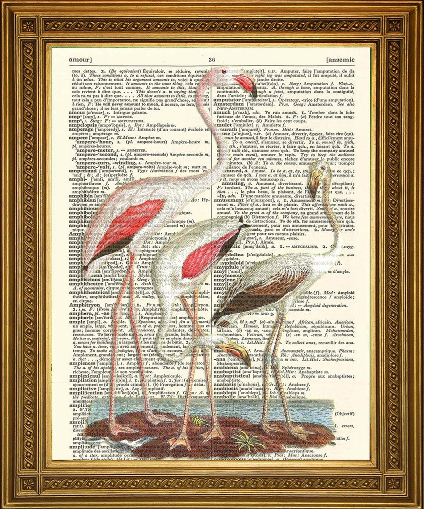 IMPRESIÓN DE PÁJAROS DE FLAMINGO ROSADO: Dictionary Art Wall Decor - Print Arcade USA