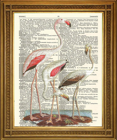 PINK FLAMINGO BIRDS PRINT: Dictionary Art Wall Decor - Print Arcade USA