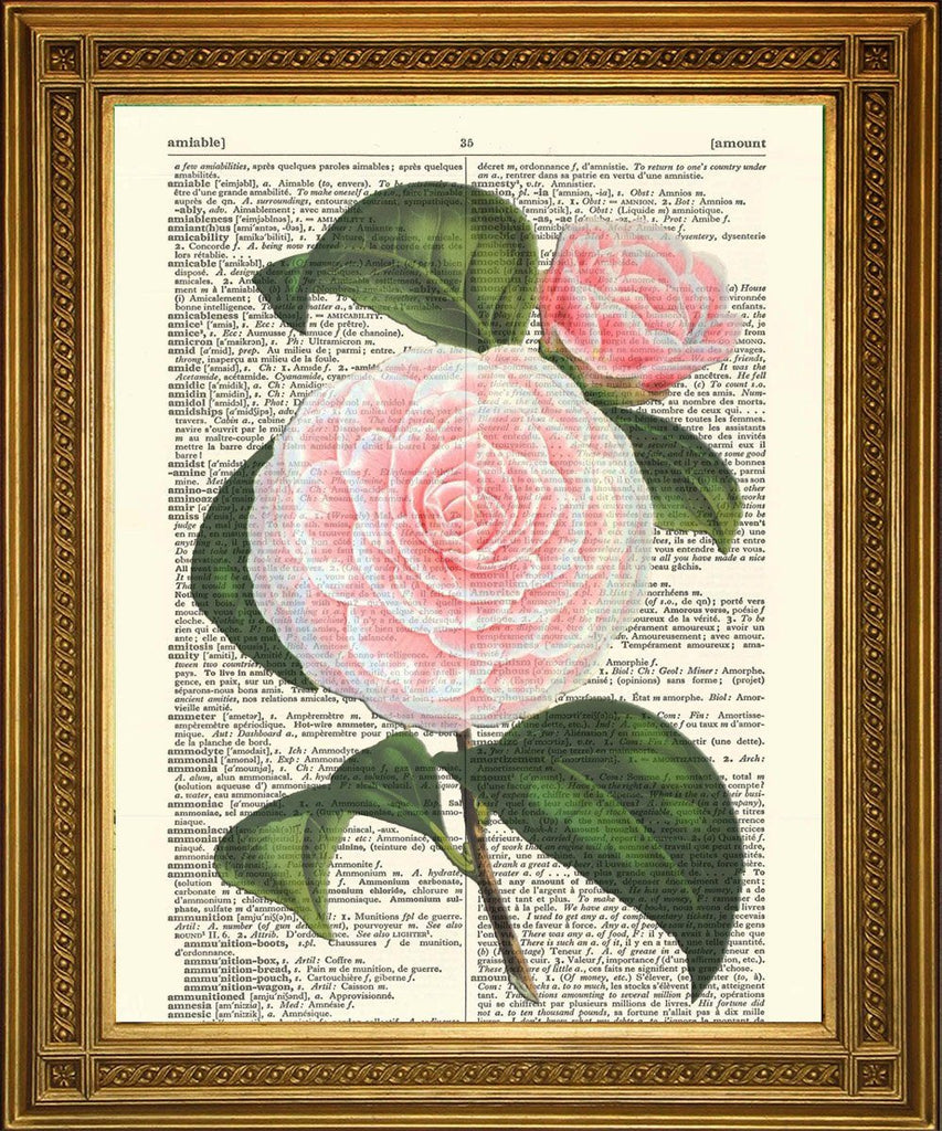 ROSE & DAHLIA DRUCKE: Pink & Purple Flowers Dictionary Art - Drucken Sie Arcade USA