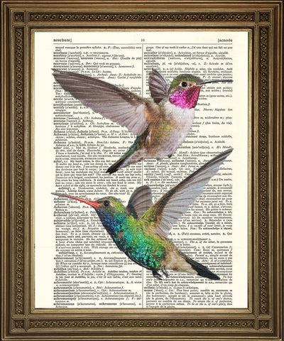 HUMMING BIRDS PRINT: Green & Red Love Heart Birds, Dictionary Art - Print Arcade USA