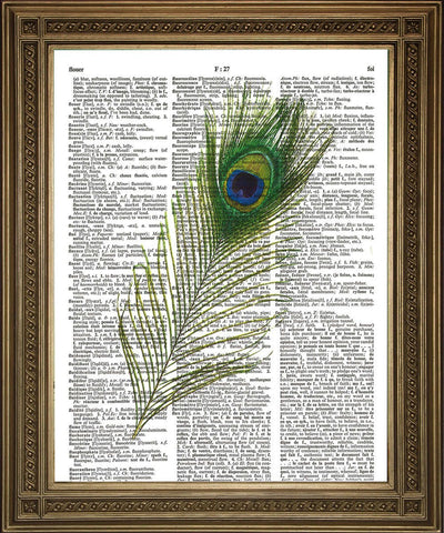 GREEN PEACOCK FEATHER: Vintage Dictionary Art Print - Print Arcade USA