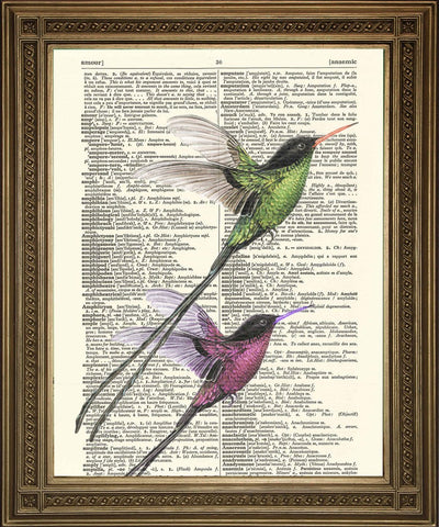 BIRD ART PRINT: Two Long Tail Birds Dictionary Art - Print Arcade USA