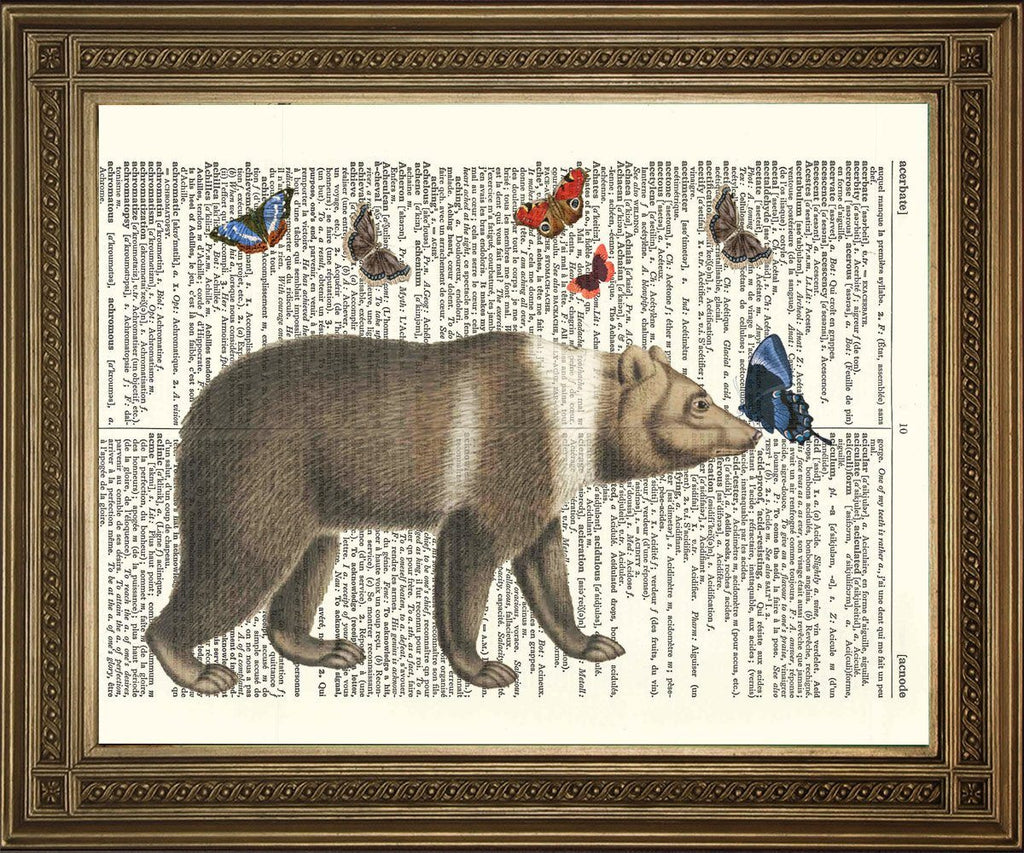 BROWN BEAR PRINT: Vintage Dictionary Page Art - Print Arcade USA