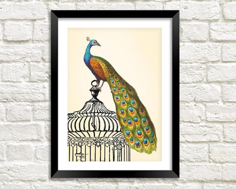 PEACOCK ART PRINT: Vintage Green Bird on Cage - The Print Arcade