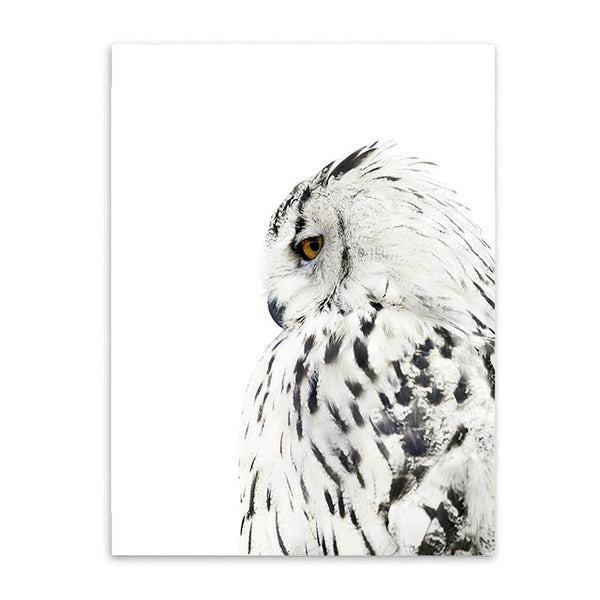 OWL AND FEATHER PRINTS: Canvas Minimalist Wall Art - Print Arcade USA