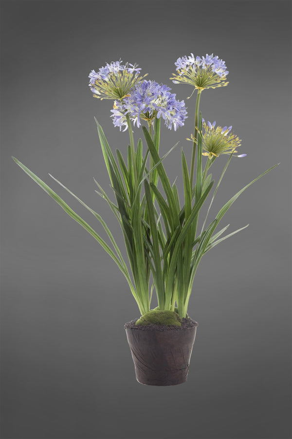 Agapanthus - Lavender - 110cm Tall Artificial Plant In Paper Pot