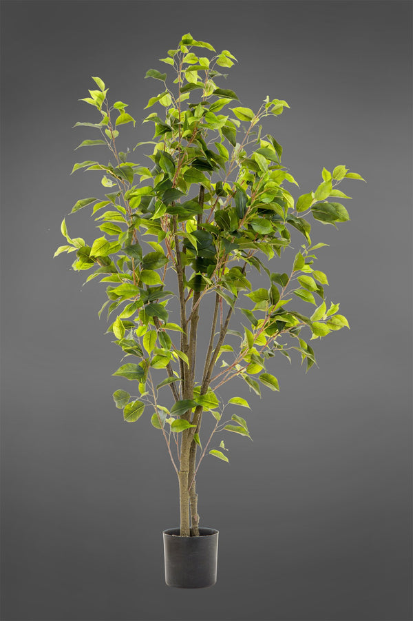 Ficus - Green - 1.2m Tall Artificial Tree