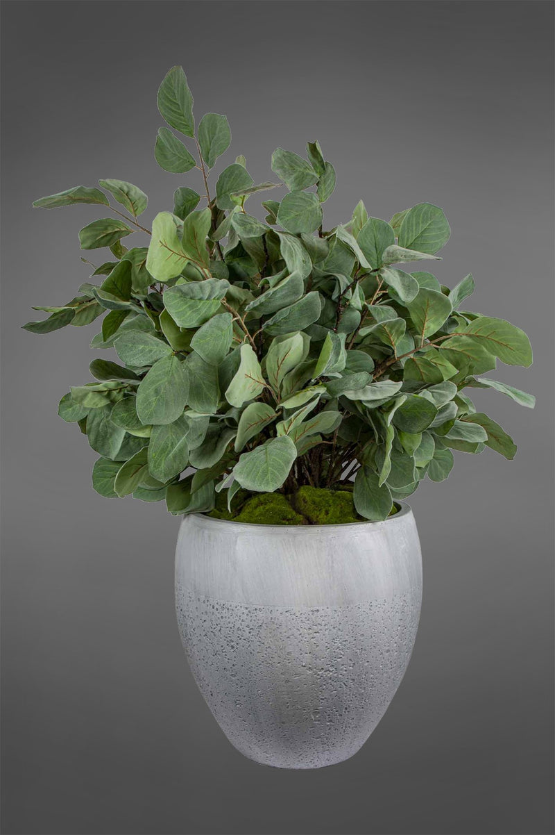 Ficus Greenery - Green - 110cm Tall Artificial Plant In Medium Grey Pot