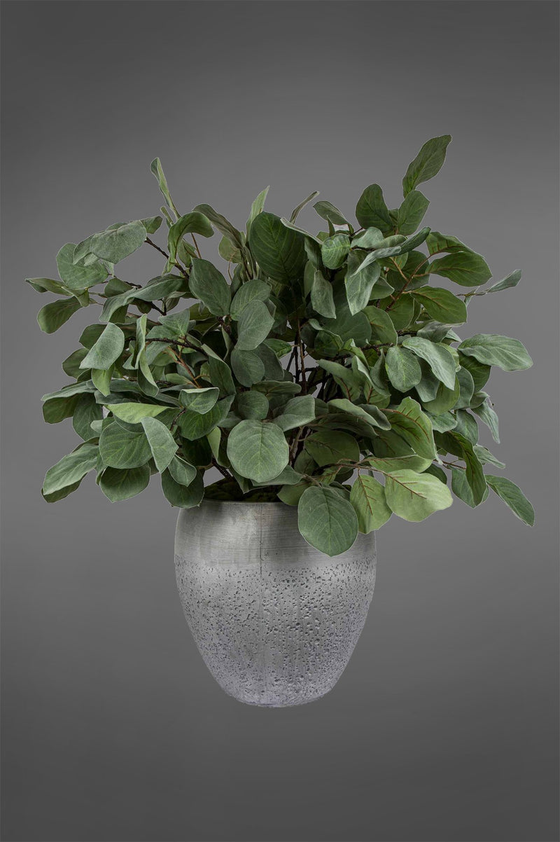 Ficus Greenery - Green - 140cm Tall Artificial Plant In Medium Grey Pot