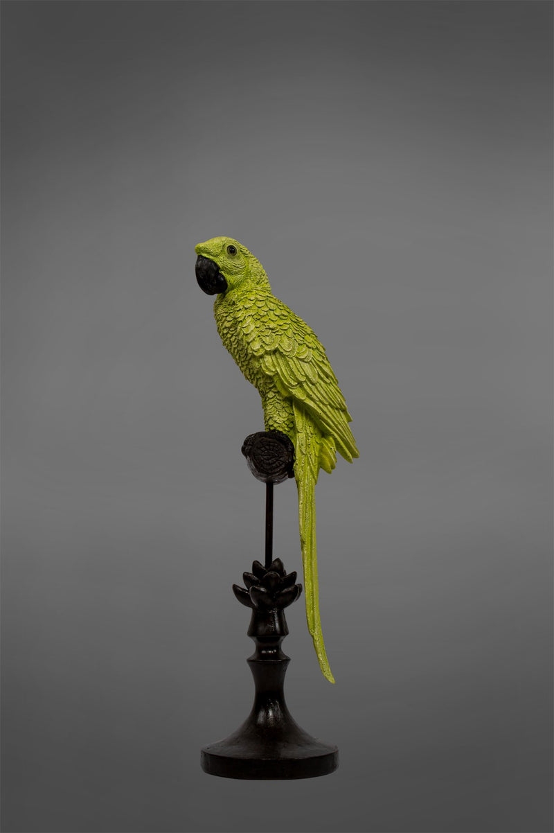 Alexa - Light Green/Black - Parrot on Stand
