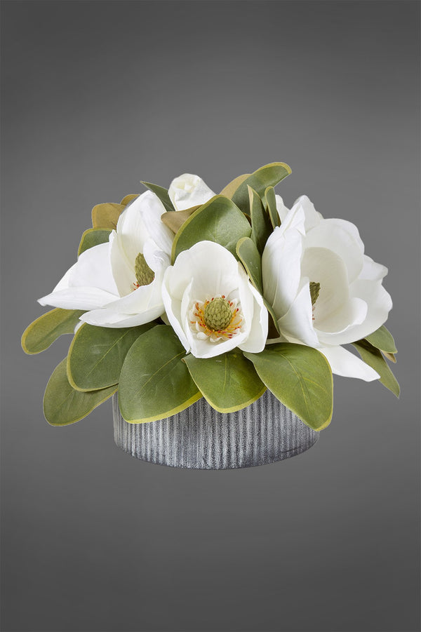 Magnolia - White - 28cm Tall Artificial Flowers in Iron Pot