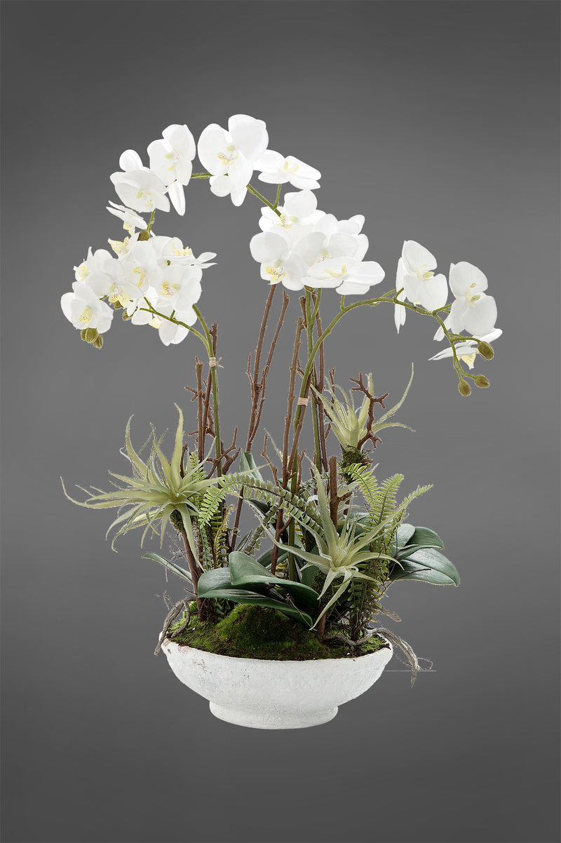 Phalaenopsis and Ferns - White/Green - 60cm Tall Artificial Orchid and Ferns in White Pot