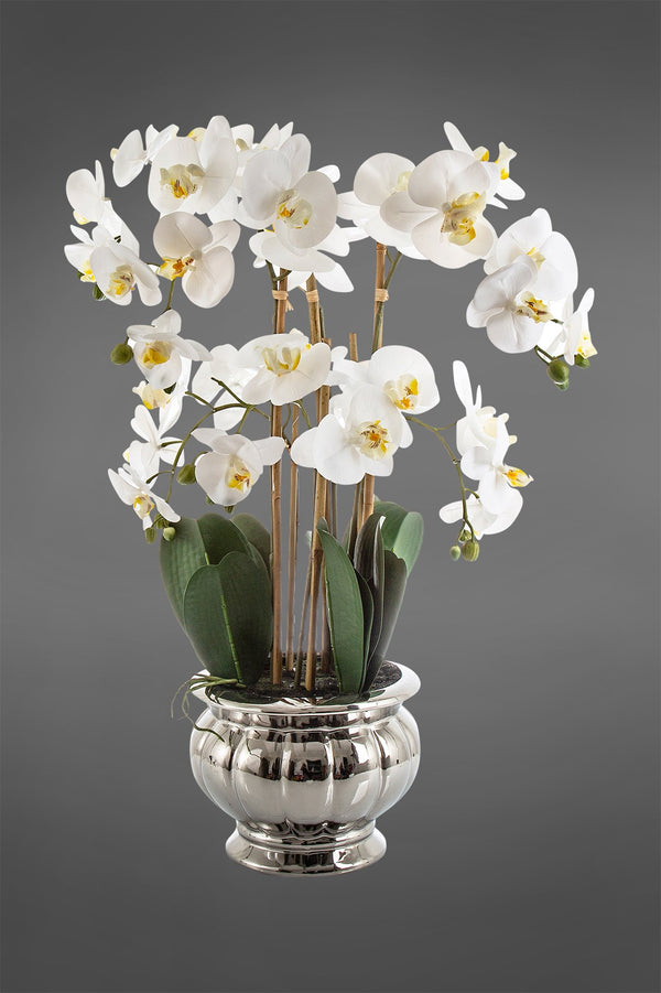 Phalaenopsis - White - 68cm Tall Artificial Orchid in Silver Ribbed Bowl