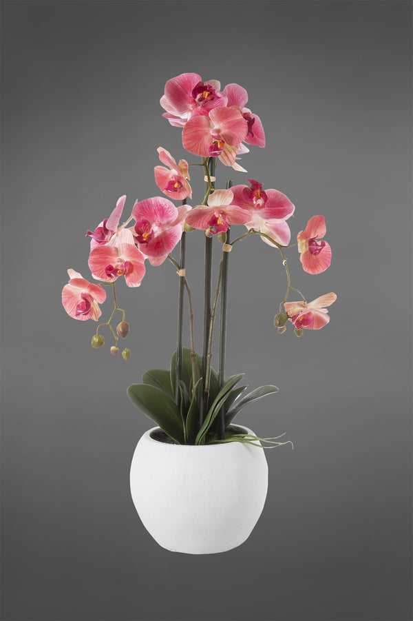 Phalaenopsis - Pink - 65cm Tall Artificial Orchid in White Pot