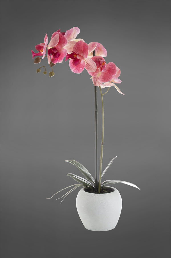 Phalaenopsis - Pink - 54cm Tall Artificial Orchid in White Pot