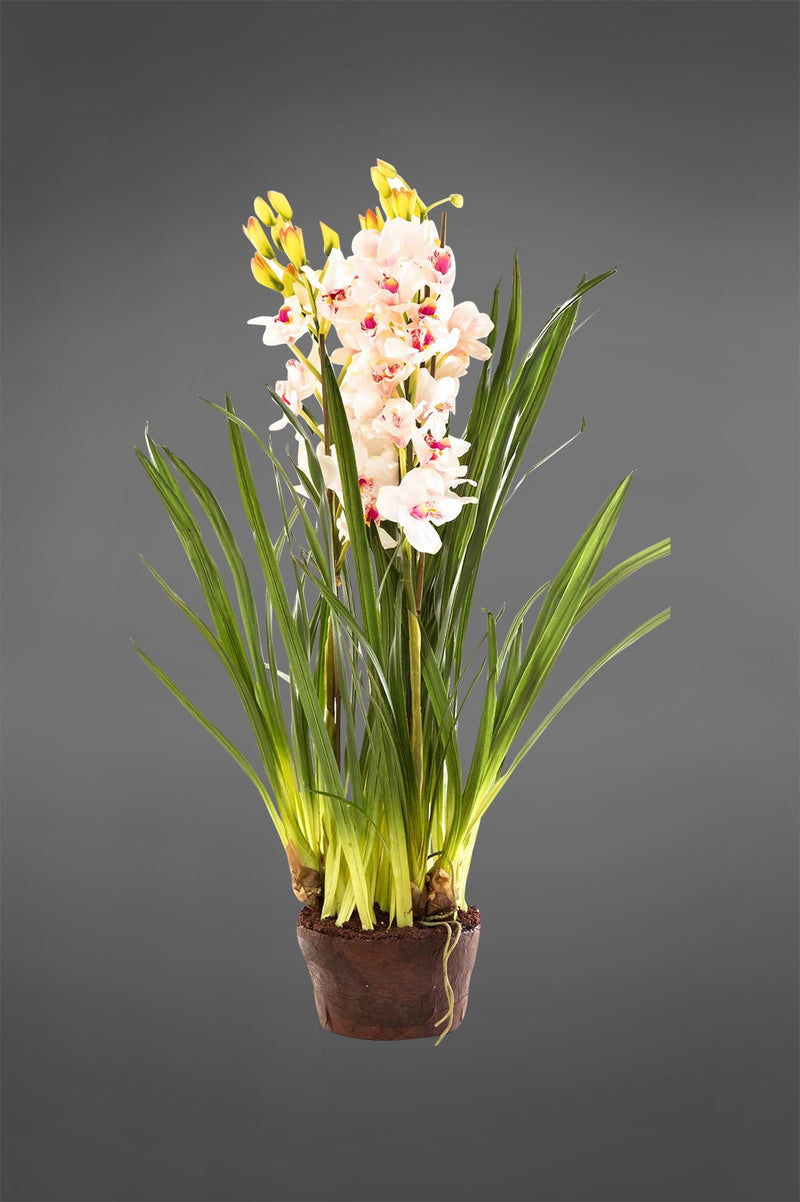 Cymbidium - Light Pink - 1.1m Tall Artificial Orchid in Paper Pot