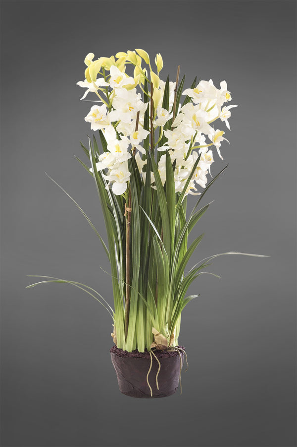 Cymbidium - White - 1.1m Tall Artificial Orchid in Paper Pot