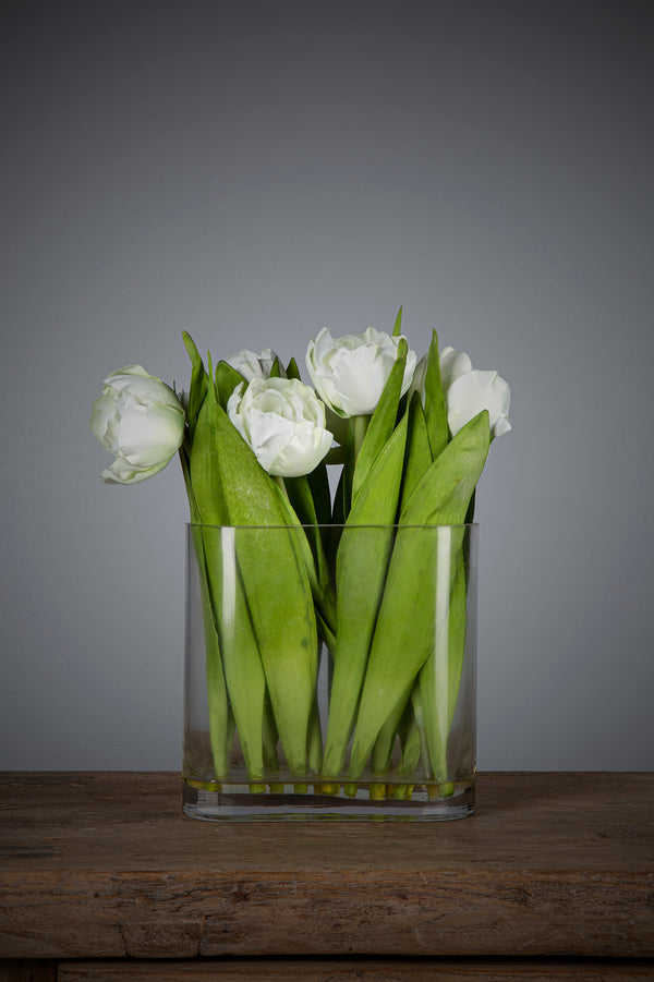 Tulip - White - 30cm Tall Artificial Flowers in Water in Oblong Glass Vase