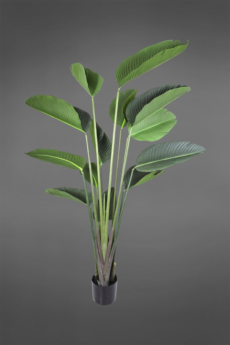 Bird of Paradise Tree - Green - 1.8m Tall Artificial Tree