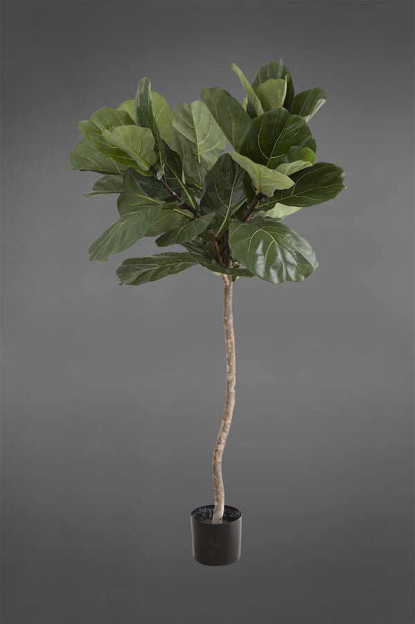 Fiddle Leaf Tree - Green - 1.2m Tall Artificial Tree